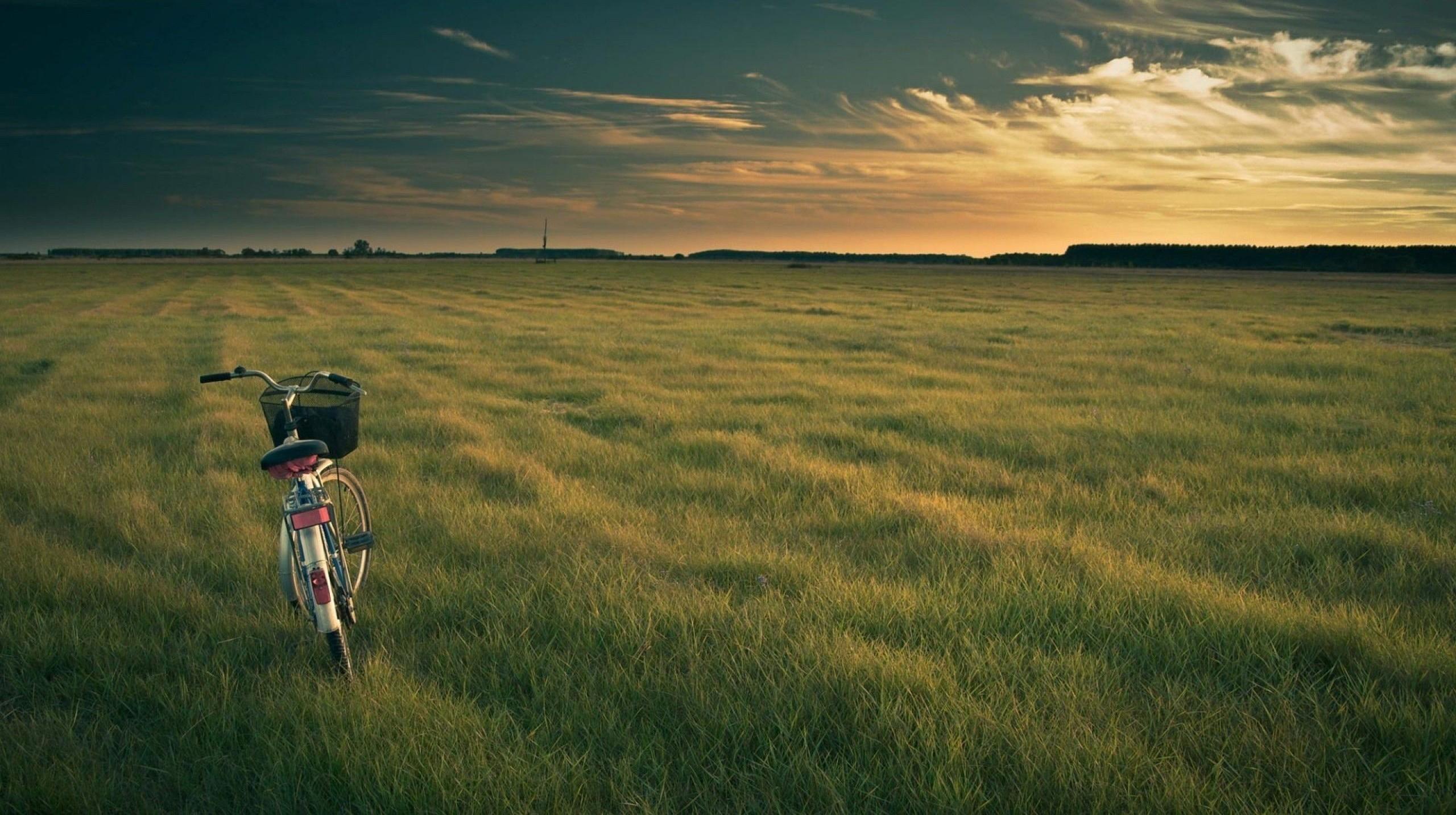 bicycle,-meadow,-sky-197263