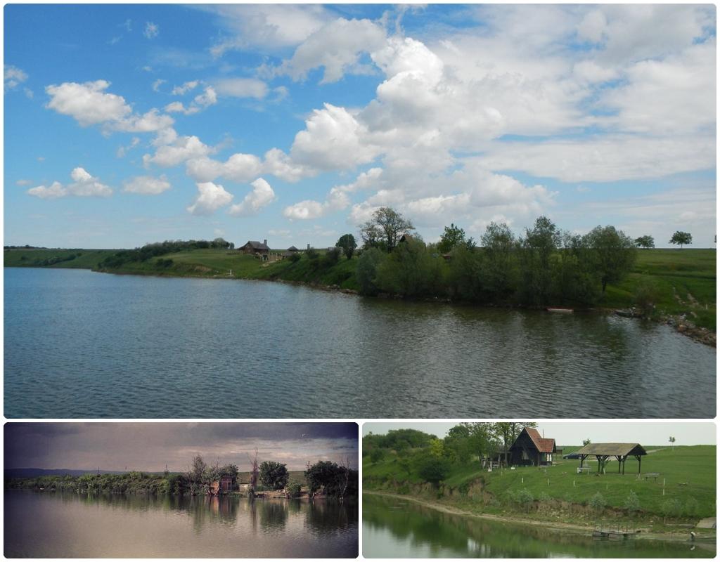 Bogastvo vodenih površina. Foto: Mirjana Vasiljević