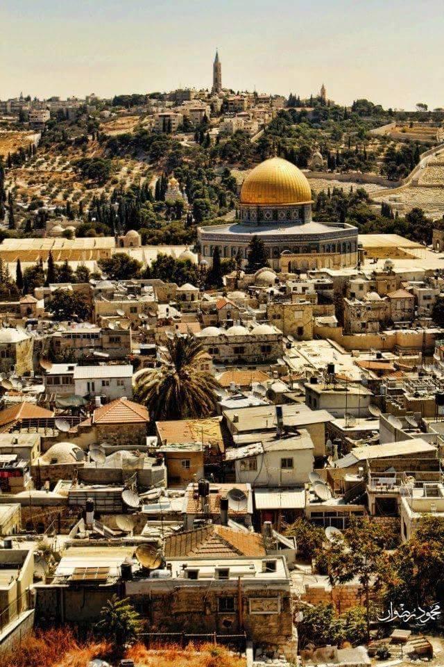 Palestinsko veče