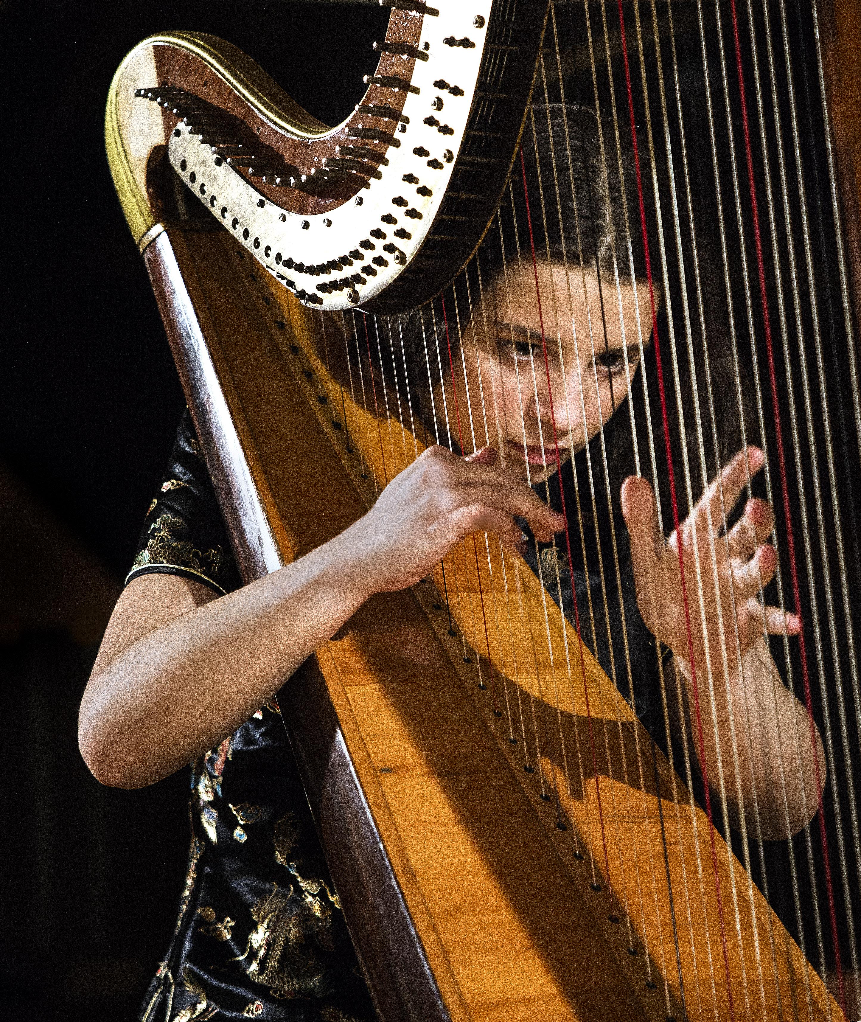 ZOJA: Koncert za harfu
